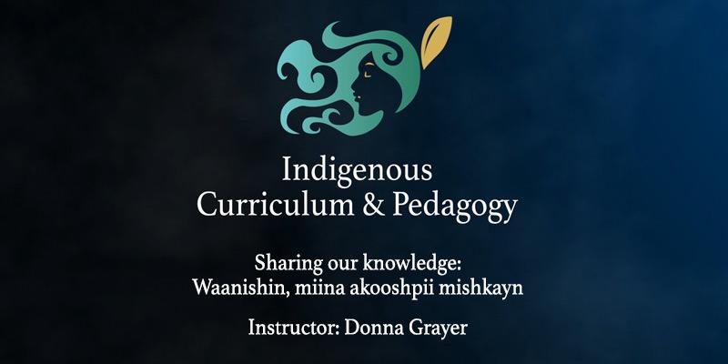 Indigenous Curriculum and Pedagogy Series